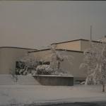 vuk_vom_fmw_winter